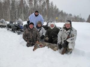 Клавдино. Охота на волка